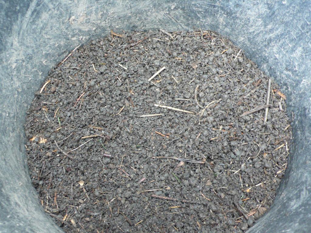 Gesiebter Kompost für die Anzuchterde