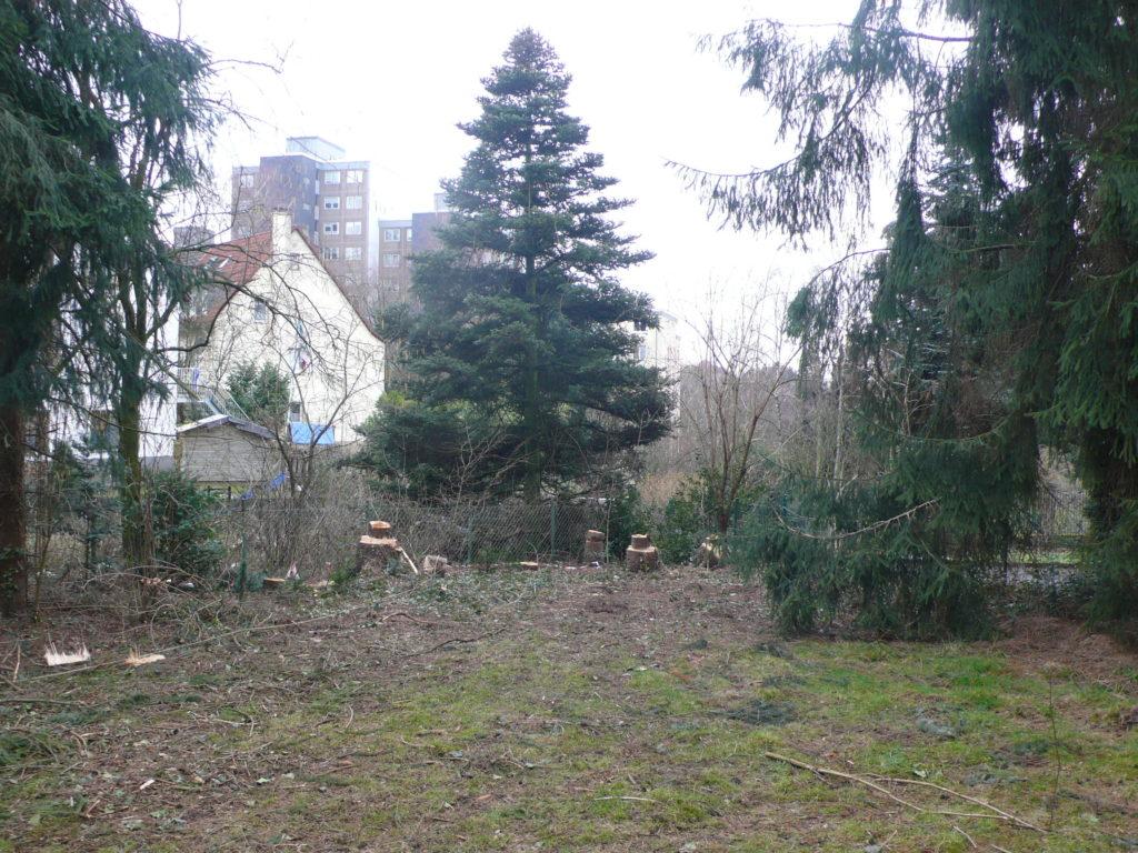 Standort für die Wildobsthecke vor der Pflanzung
