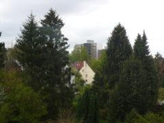 Die Lücke in der Sichtschutzhecke gibt den Blick auf ein Hochhaus frei