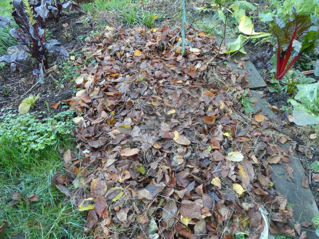10 cm Laubmulch auf dem Gemüsebeet Ende November